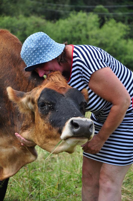 cow Hug dobra luka