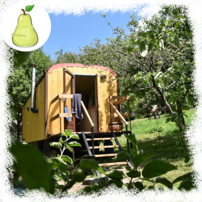 tiny house pear dobra luka